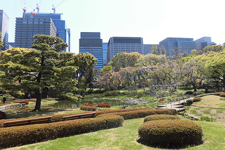 The East Gardens of the Imperial Palace